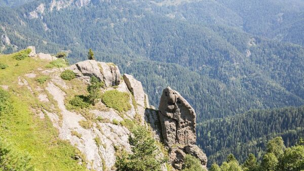 Боржоми-Харагаульский Национальный парк - Sputnik Грузия
