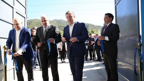 Георгий Квирикашвили на открытии Сагурамо ГЭС - Sputnik Грузия