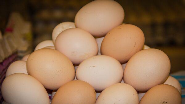კვერცხები - Sputnik საქართველო