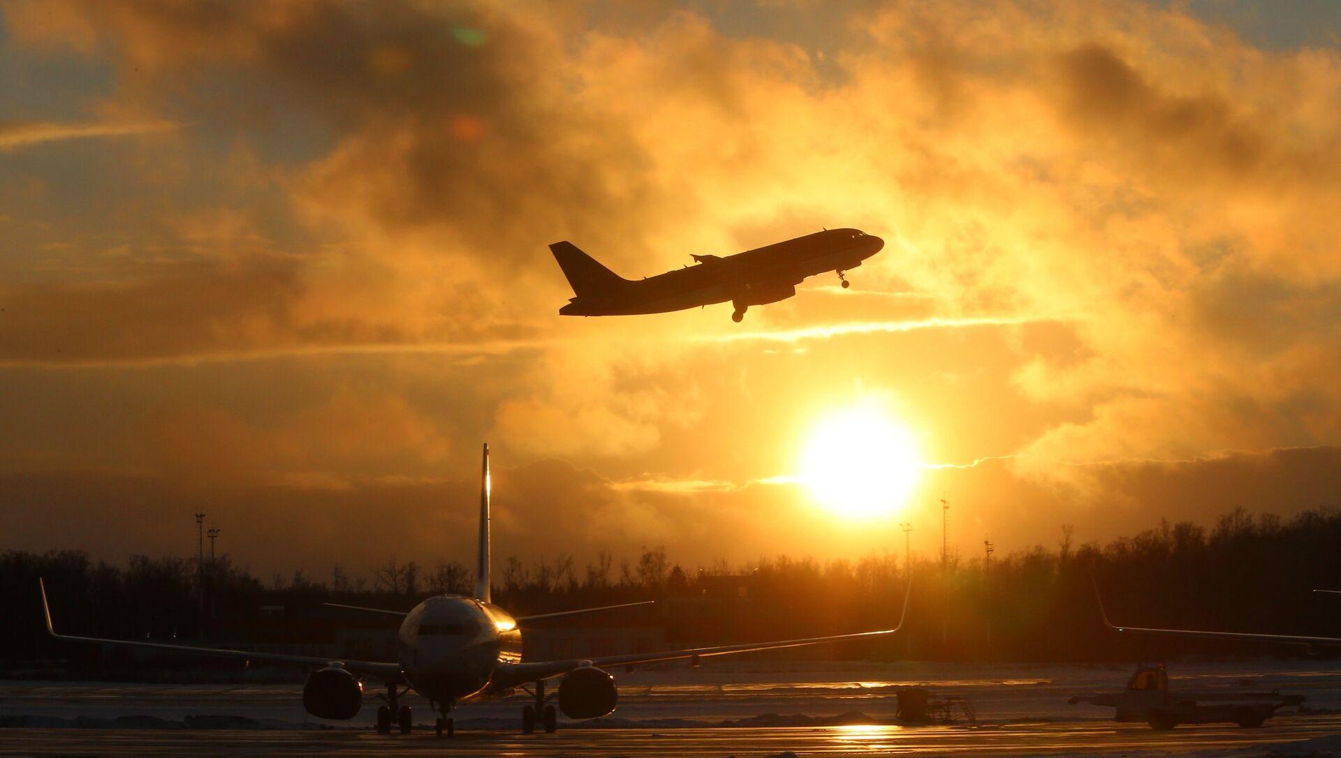 Самолеты на взлетно-посадочной полосе аэропорта Домодедово - Sputnik Грузия, 1920, 24.02.2021