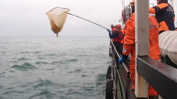 Спасатели на кораблях и вертолетах искали обломки Ту-154 в Черном море - Sputnik Грузия