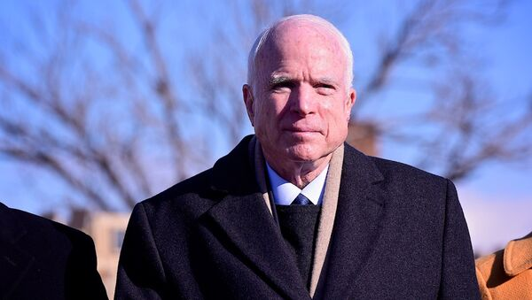 Американский сенатор Джон Маккейн - Sputnik Грузия