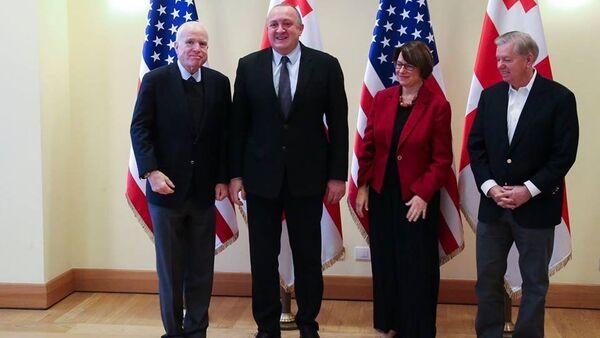 საქართველოს პრეზიდენტი სენატორ ჯონ მაკკეინს შეხვდა - Sputnik საქართველო