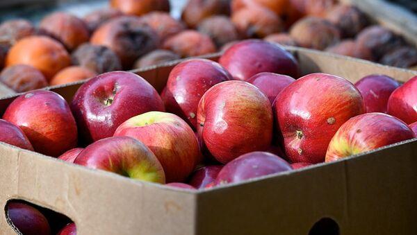 Яблоки в ящике на рынке - Sputnik Грузия