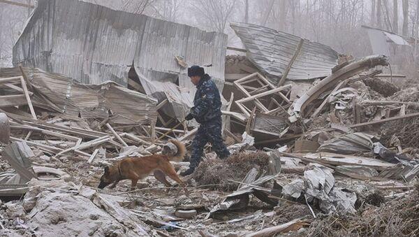 Крушение самолета в Кыргызстане - Sputnik Грузия