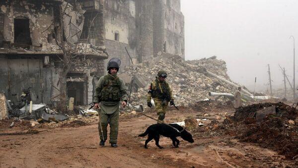 Разминирование российскими инженерами исторической Цитадели древней крепости Алеппо - Sputnik Грузия