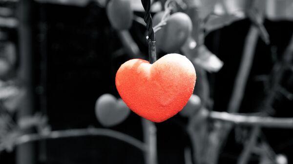 გული, სიყვარულის ნიშანი - Sputnik საქართველო