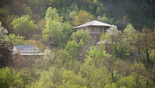 Дом в горах среди деревьев в регионе Имерети Западная Грузия - Sputnik Грузия