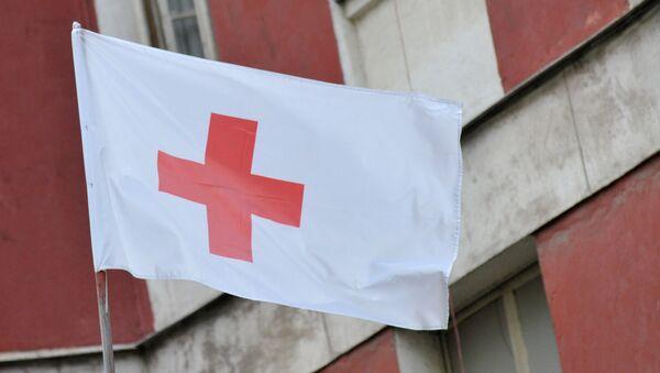 წითელი ჯვრის ორგანიზაციის დროშა - Sputnik საქართველო