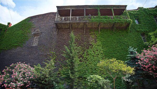 Живая стена на одном из домов в историческом центре Тбилиси - Sputnik Грузия