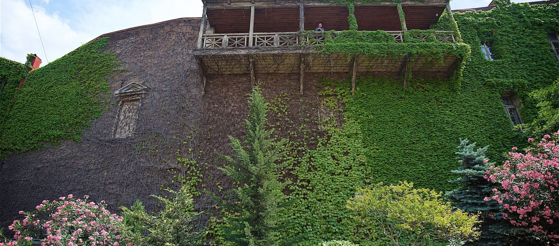 Живая стена на одном из домов в историческом центре Тбилиси - Sputnik Грузия, 1920, 29.06.2021