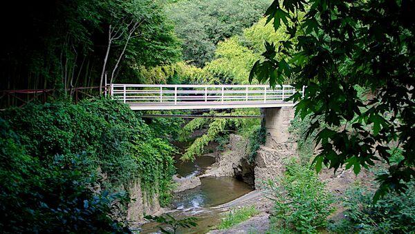 Один из пешеходных мостов через речку Цавкисисцкали на территории тбилисского Ботанического сада - Sputnik Грузия