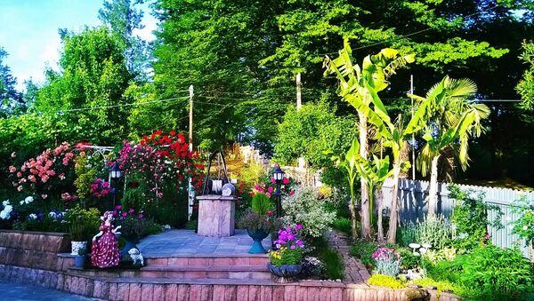 ნინო თორდიას ბაღი - Sputnik საქართველო