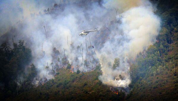 Вертолет тушит лесной пожар в Боржоми-Харагаульском лесу - Sputnik Грузия