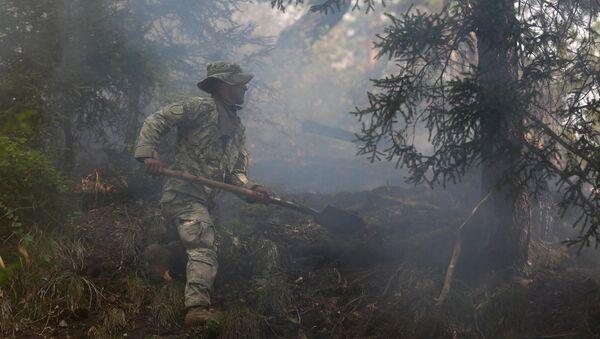Военнослужащий участвует в ликвидации пожара в Боржоми-Харагаульском лесу - Sputnik Грузия