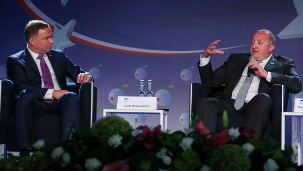 Президенты Грузии и Польши Георгий Маргвелашвили и Анджей Дуда на Экономическом форуме - Sputnik Грузия