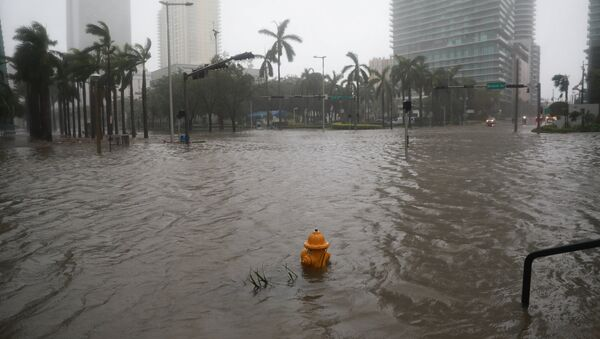 Затопленные улицы в центре Майами после урагана Ирма - Sputnik Грузия