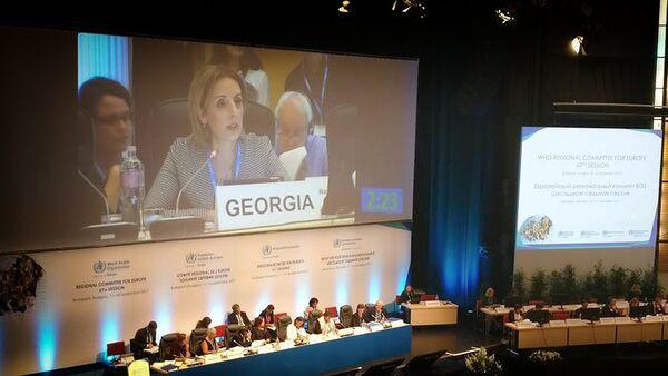 Нино Бердзули на заседании европейского регионального комитета Всемирной организации здравоохранения - Sputnik Грузия