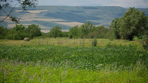 Поля в долине в регионе Шида Картли - Sputnik Грузия