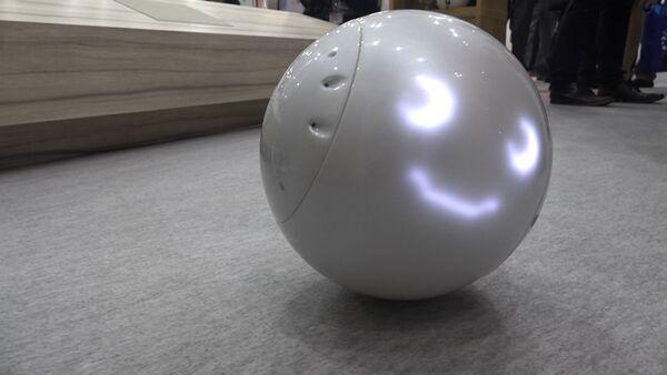 Японский робот для детей - Sputnik Грузия