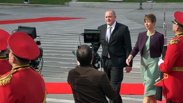 ესტონეთის პრეზიდენტის შეხვედრა თბილისში - Sputnik საქართველო