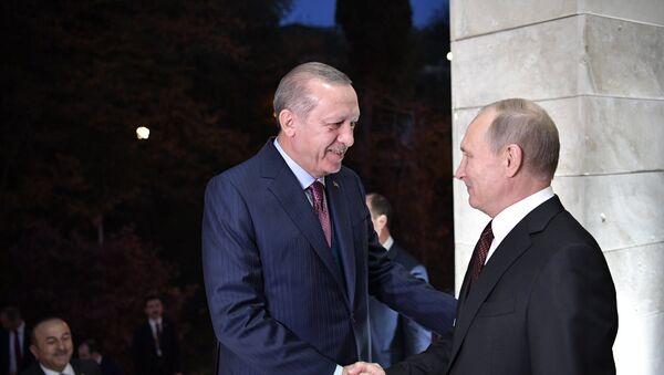 პრეზიდენტ პუტინის შეხვედრა თურქეთის პრეზიდენტ ერდოღანთან - Sputnik საქართველო