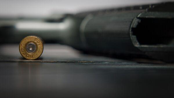 Пистолет и пуля - Sputnik Грузия
