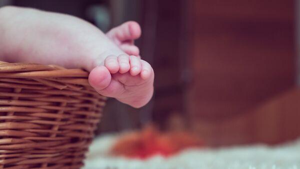 Младенец в корзине - Sputnik Грузия