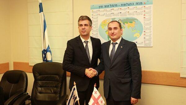 Министры экономики Израиля и Грузии Эли Коэн и Дмитрий Кумсишвили - Sputnik Грузия