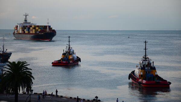 Батумский порт - грузовое судно в Черном море - Sputnik Грузия