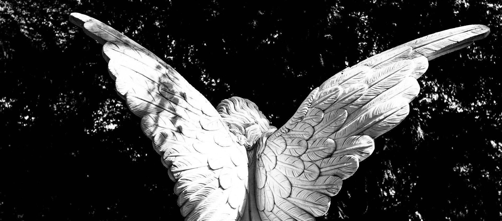ანგელოზი - Sputnik საქართველო, 1920, 31.07.2019