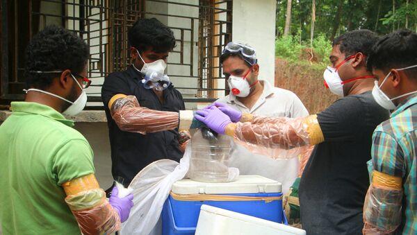 Отдел животноводства и лесные чиновники вносят летучую мышь в контейнер после того, как поймали его в колодце в Чангароте в Кожикоде в индийском штате Керала - Sputnik Грузия