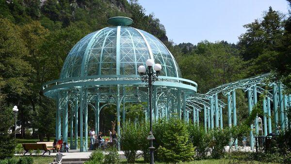 Источник с минеральной водой в Боржомском парке - Sputnik Грузия