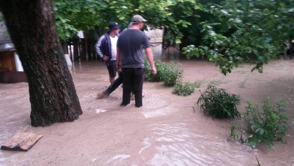 Наводнение в Хашурском районе - Sputnik Грузия