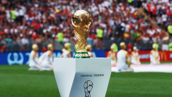 Кубок на поле перед началом финального матча чемпионата мира по футболу между сборными Хорватии и Франции - Sputnik Грузия