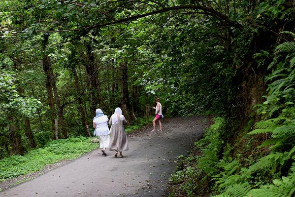Дорога к монастырю весьма живописна. По дороге встречаются многочисленные и не очень группы туристов - Sputnik Грузия