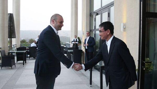 Премьер Грузии Мамука Бахтадзе и глава МИД Японии Таро Коно - Sputnik Грузия