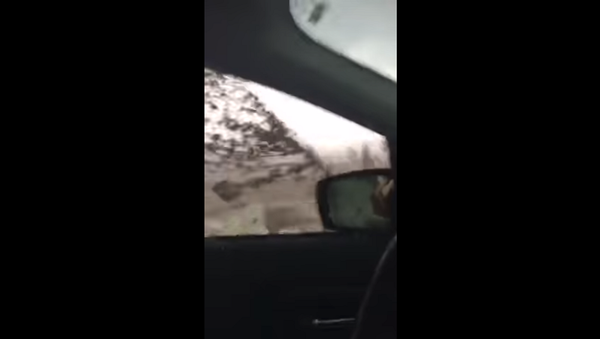 Запертая в машине женщина сняла на видео, как ее затянуло в торнадо - Sputnik Грузия