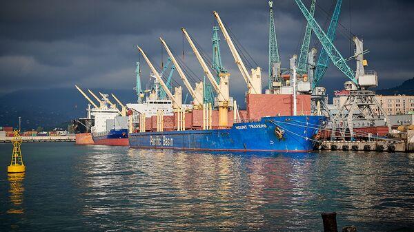 Грузовое судно на разгрузке в Батумском порту - Sputnik Грузия