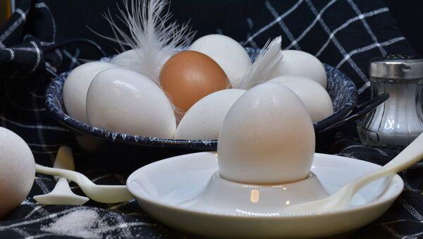 კვერცხი - Sputnik საქართველო