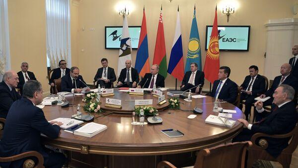 Заседание Высшего Евразийского экономического совета - Sputnik Грузия