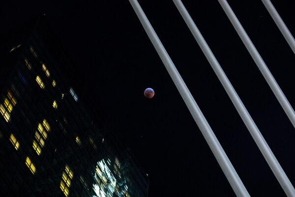 Полное лунное затмение в Нью-Йорке  - Sputnik Грузия