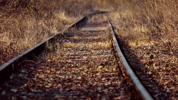 Узколинейная железная дорога в поселке - Sputnik Грузия