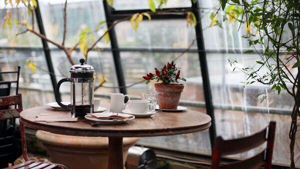 ყავის მაგიდა - Sputnik საქართველო