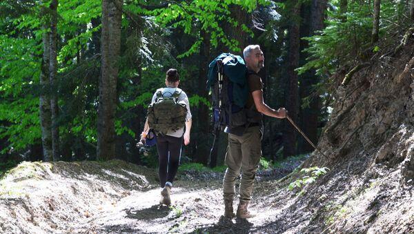 Туристы гуляют в лесу Северного отдела Кавказского государственного природного биосферного заповедника имени Х. Г. Шапошникова - Sputnik Грузия