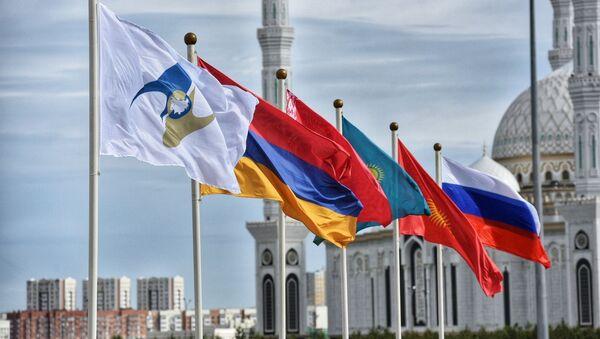 Президент РФ В. Путин принимает участие в заседании Высшего Евразийского экономического совета - Sputnik Грузия
