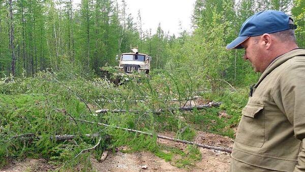 Ликвидация лесных пожаров в Якутии - Sputnik Грузия