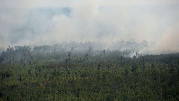 Ликвидация пожаров в Красноярском крае - Sputnik Грузия