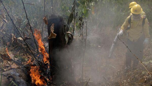 Лесные пожары в джунглях Амазонии - Sputnik Грузия
