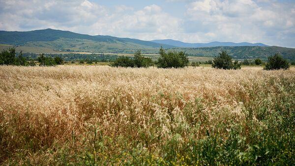 Регион Шида Картли. Вид с центральной автотрассы. Вдалеке - Цхинвальский регион - Sputnik Грузия